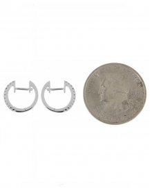 EARRINGS (SE411)