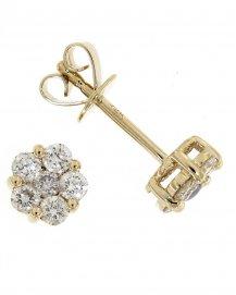 Earrings (TE336)
