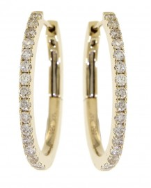 Earrings (TE643)