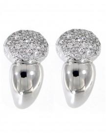 Earrings (TE651)